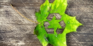 Biodegradable Recycle Switch Plastic