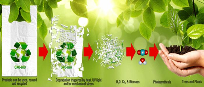 Composition of Biodegradable Plastics